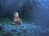duck-duck-goose-44
